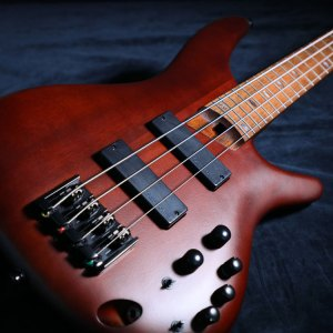 ELECTRIC BASSES | PRODUCTS | Ibanez guitars
