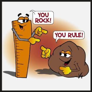 you-rock-you-rule