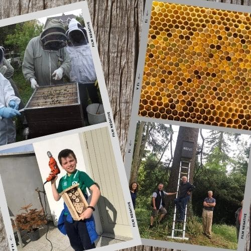 Photos of volunteers and supporters helping to save the bees