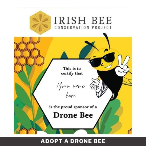 Adopt A Drone Bee