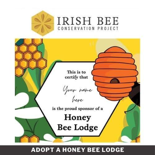 Adopt a Honey Bee Lodge