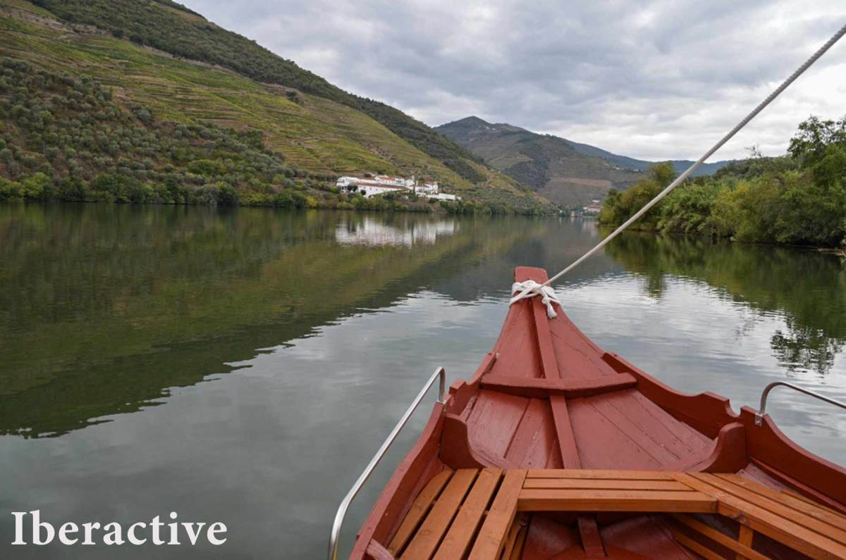 Traditional wooden boat fro the Douro Valley