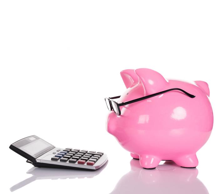 Presupuesto Orientativo