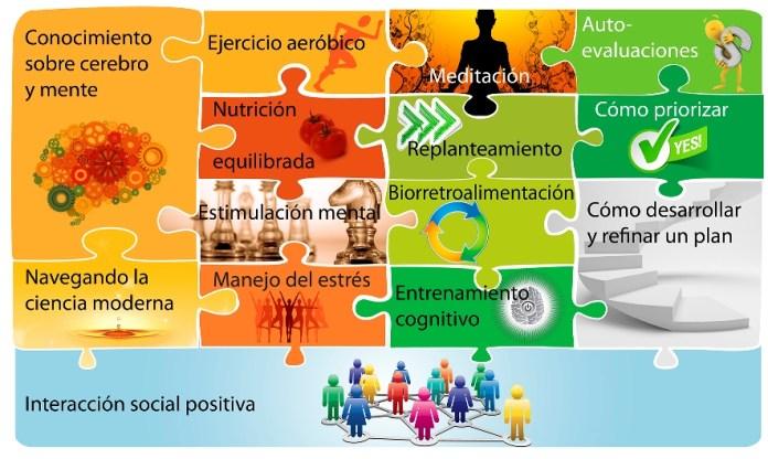 SaludCerebralIngredientes