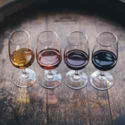 Mediterranean Wines Mixed Case