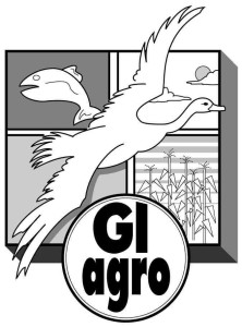 GI Agro logo - original size