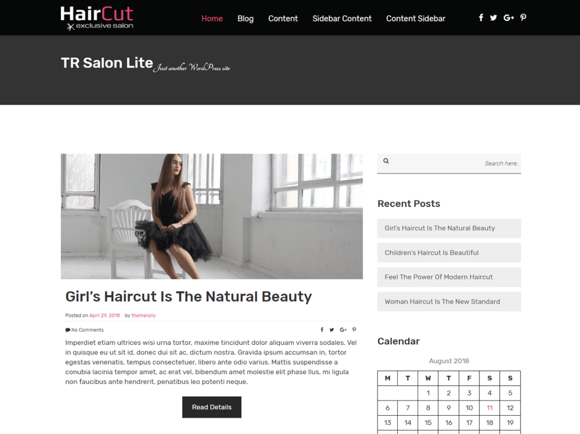 TR Salon Lite - WordPress Theme Lifetyle Niches
