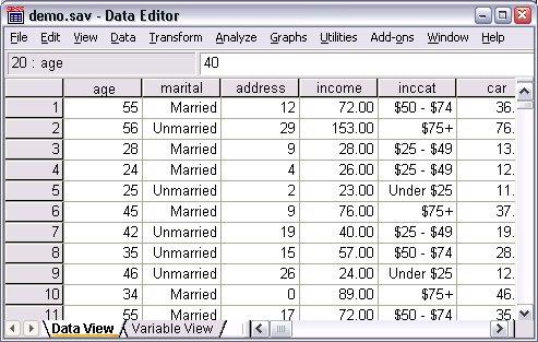 طريقة عرض تسميات القيمة لكل البيانات في محرر البيانات