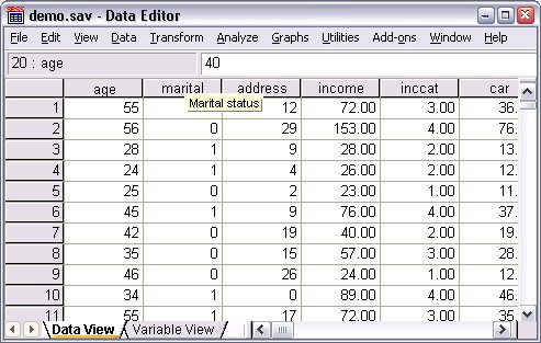 ملف demo.sav في محرر البيانات - فتح ملف بيانات