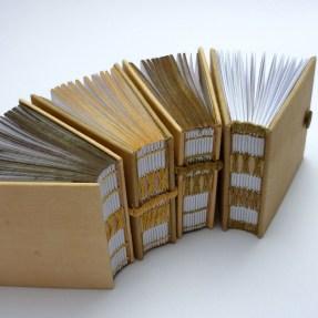 Allium Cepa test books Kate Bowles 2013