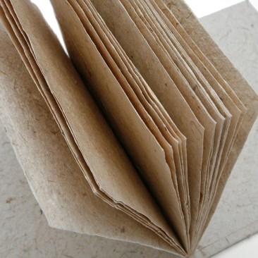 poo paper inside leaves of paper