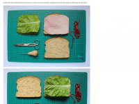 food-stab-binding-sandwich