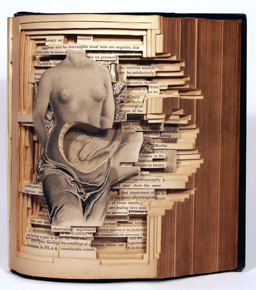 2015.11.19 - Brian Dettmer Book Sculpture - 5432231080_0ffe007178_b