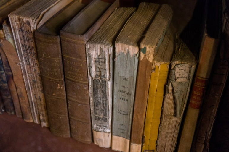 2016.08.04 - 18 - The Pisano Library of San Vidal - Libreria Pisani di San Vidal