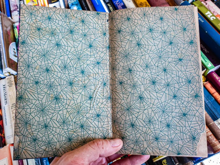 2019.08.31 - Peculiar Choice of Spider-Web Endpapers in an Antique Book