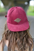 Cap red dark brown labeled