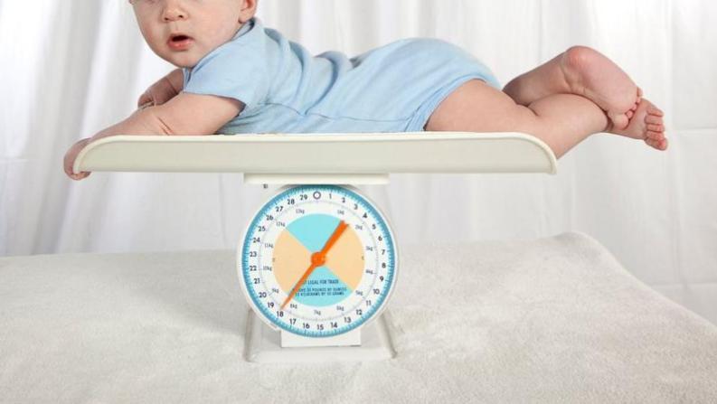 Jenis Makanan Bayi 7 Bulan Agar Cepat Gemuk Ibu Ayah