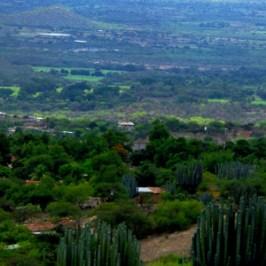 Historia de Coxcatlán Puebla