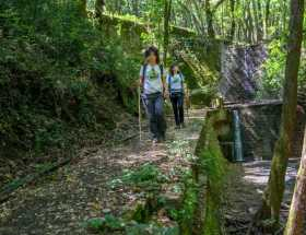 escursione-acquedotto-di-colognole