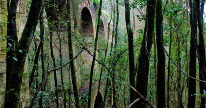 escursione-acquedotto-leopoldino