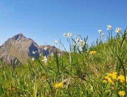 escursione-monte-croce-giunchiglie