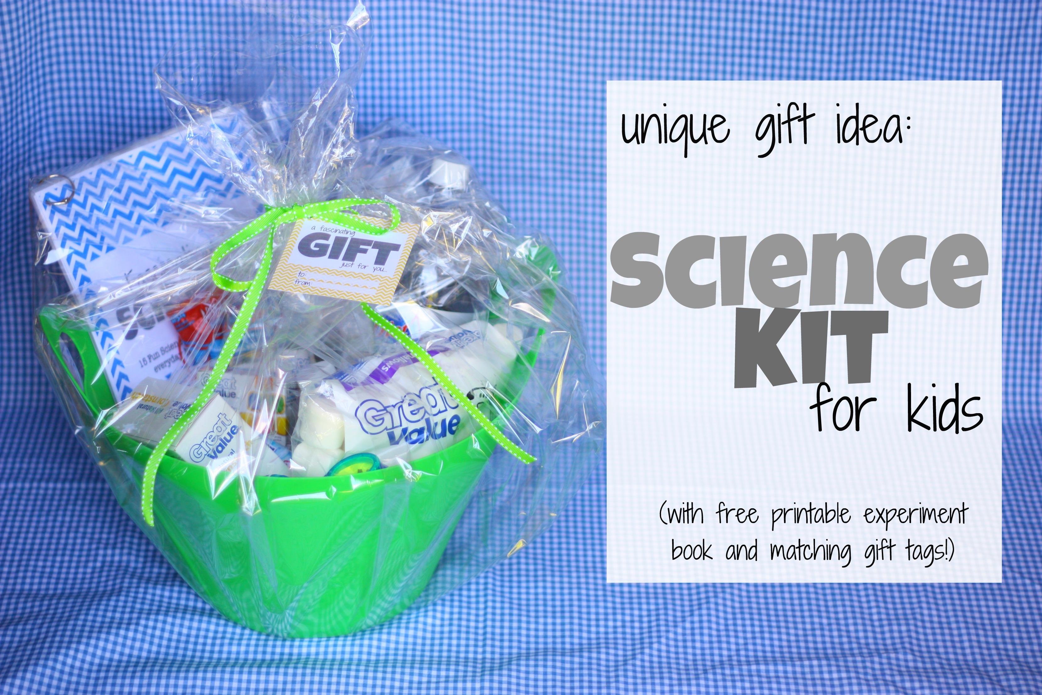 T Idea Science Kit For Kids With Free Printables