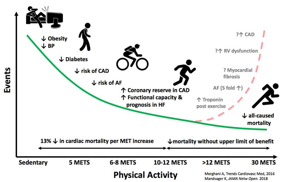 劇烈運動死亡率愈高?