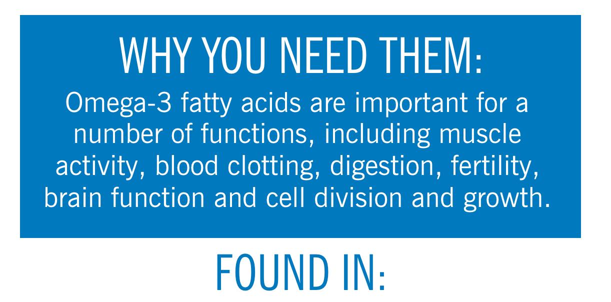 那些食物的 Omega-3 脂肪酸最高?