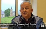 Pilgrim Scéal – the Irish monastic tradition