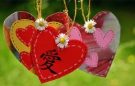 Love is ….
