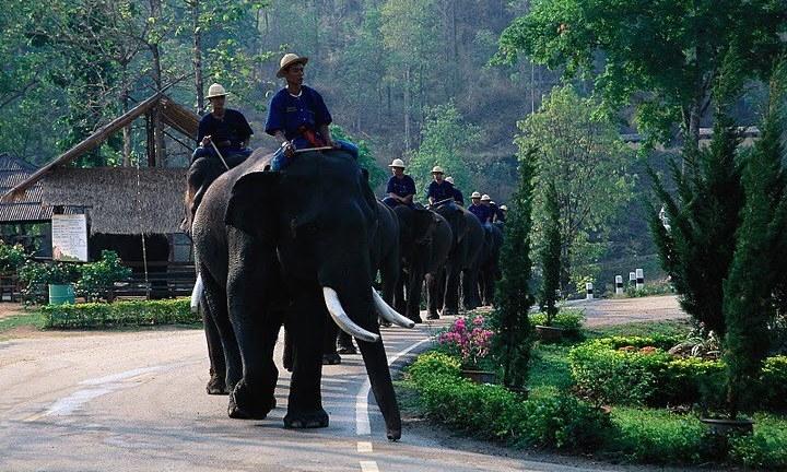 タイ~ランパーン<2>