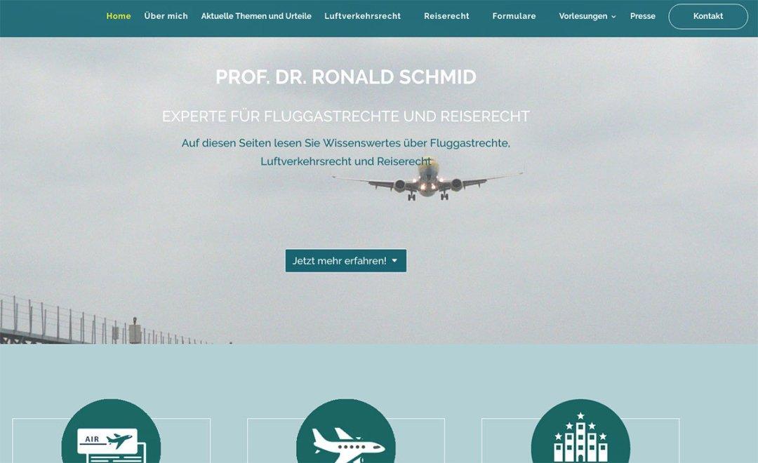 Website Prof. Dr. Ronald Schmid