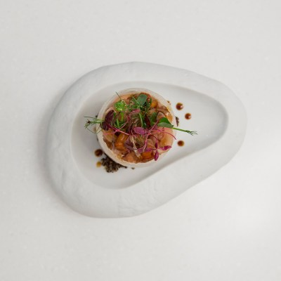 Onion Sphere on Cloud plate in ICE