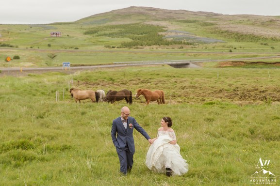 icelandic-wedding-horses
