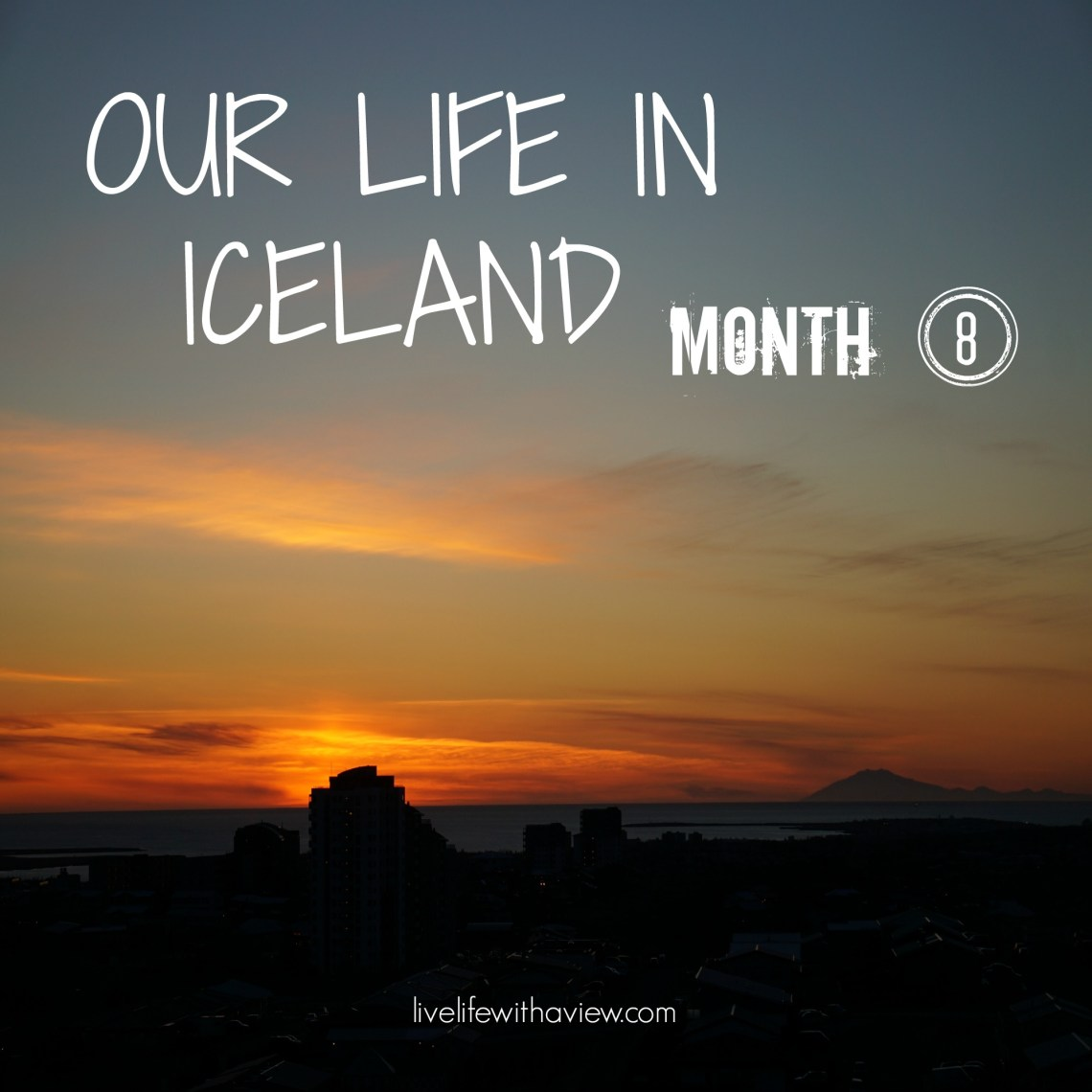 Our life in Iceland - Month 8