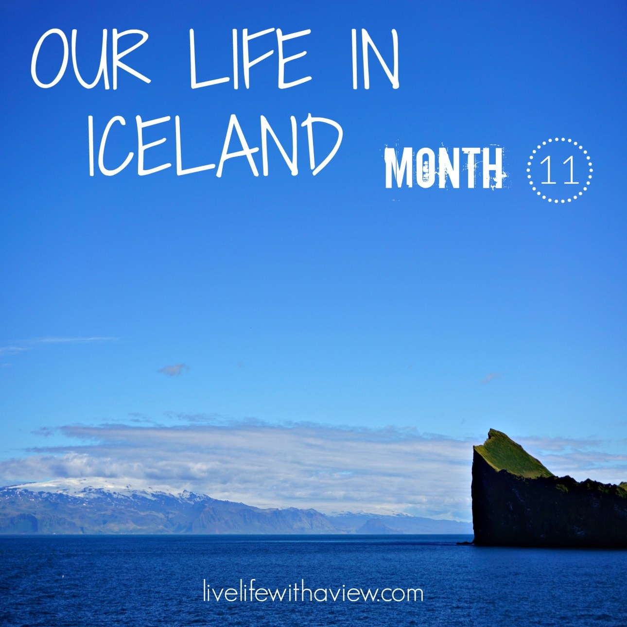 Our Life in Iceland - Month 11 | Life With a View