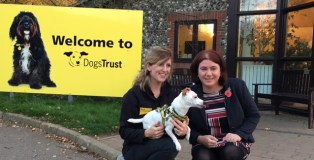 MEP Alex Mayer with Kate Brewster and Terrier Meg from Dogs Trust Snetterton.