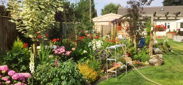 Garden opens up to public for hospital charity