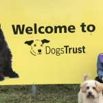 Miss Teen Norfolk Galaxy Visits Dogs Trust Snetterton