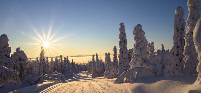 Almost a third of Brits believe Lapland is a FICTIONAL place