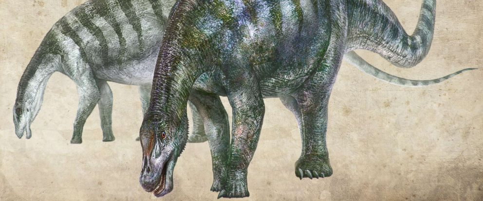 new-dinosaur-china-1-rt-thg-180724_hpMain_12x5_992
