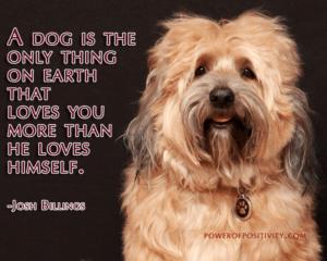 happy-dog-quote-300x240