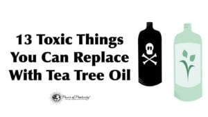 toxic-tea-tree-oil-1-300x169