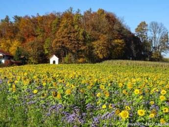 Herbstouren (2 von 7)