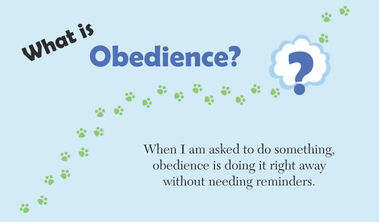 tiny thoughts on obedience icharacter family values virtues
