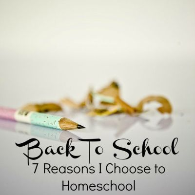 7 Reasons I Choose to Homeschool