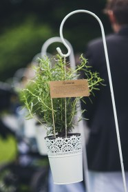 Hochzeitspflanze