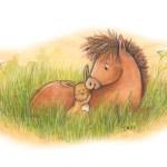 Schlafgeschichten // Pony Paul und seine neue Freundin