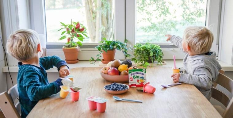 Was bedeutet eigentlich das Biosiegel und wie kann man die fröhlichen bunten Becher der FruchtZwerge bio super wiederverwehrten. Merh dazu gibt es auf dem Blog | Ichsowirso.de