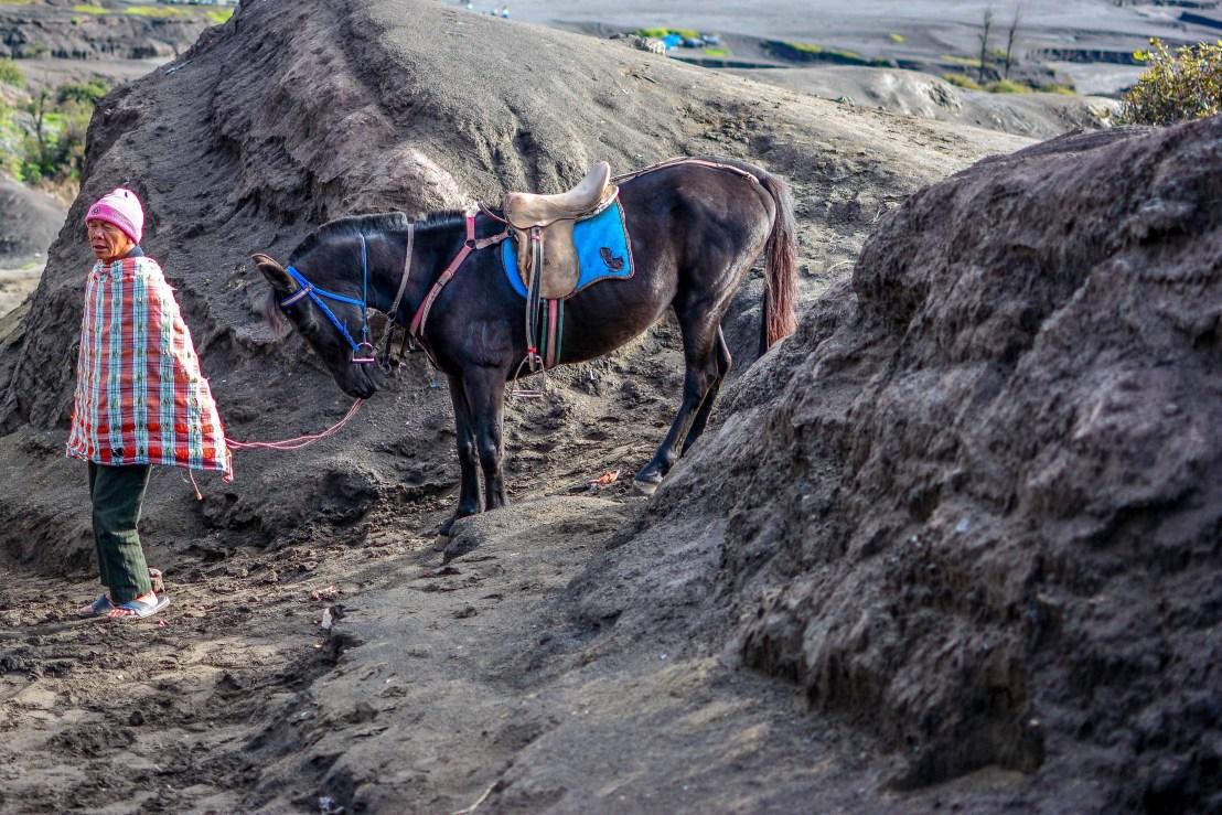 deux semaines en Indonésie Blog Voyage en asie cheval